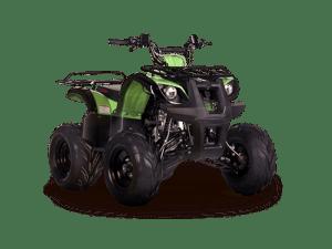 Irbis ATV125U_good