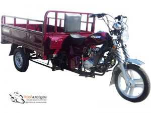 Трицикл Racer Muravei RC200ZH МотоРаспродажа steelracing.ru (1)