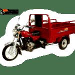 Трицикл ЗиД–Lifan LF200ZH-3