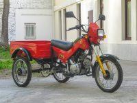 зид трицикл 5002 06