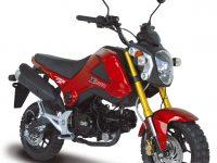 Мотоцикл MSX 125 сс (XM)