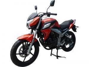 Мотоцикл Racer RC250CK-N Fighter (Россия)