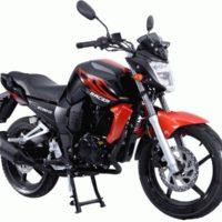 Мотоцикл Racer RC250CK Nitro (Россия)