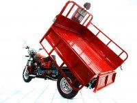 Грузовой трицикл Triton 200