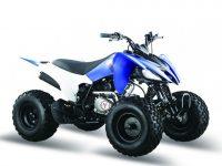(ATV) PANTERA 125 SPORT