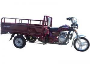 Мотороллер Рейсер Муравей 200 грузовой 2