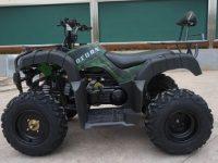 Квадроцикл BEORN 200 05
