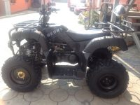 Квадроцикл BEORN 200 06
