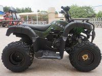 Квадроцикл BEORN 200 09