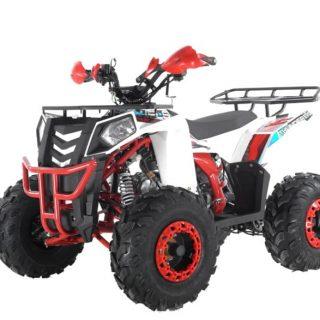 Квадроциклы Motoland Wild Track 200 и Wels Evo 125 X