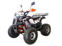 Thunder 125 LUX квадроцикл 01