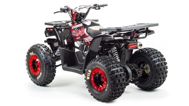 150 WILD квадроцикл 02