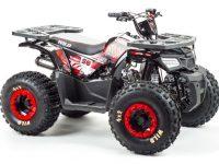 150 WILD квадроцикл 05