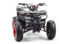 150 WILD квадроцикл 06
