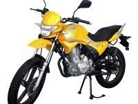 Мотоцикл Regulmoto SK200-9 02