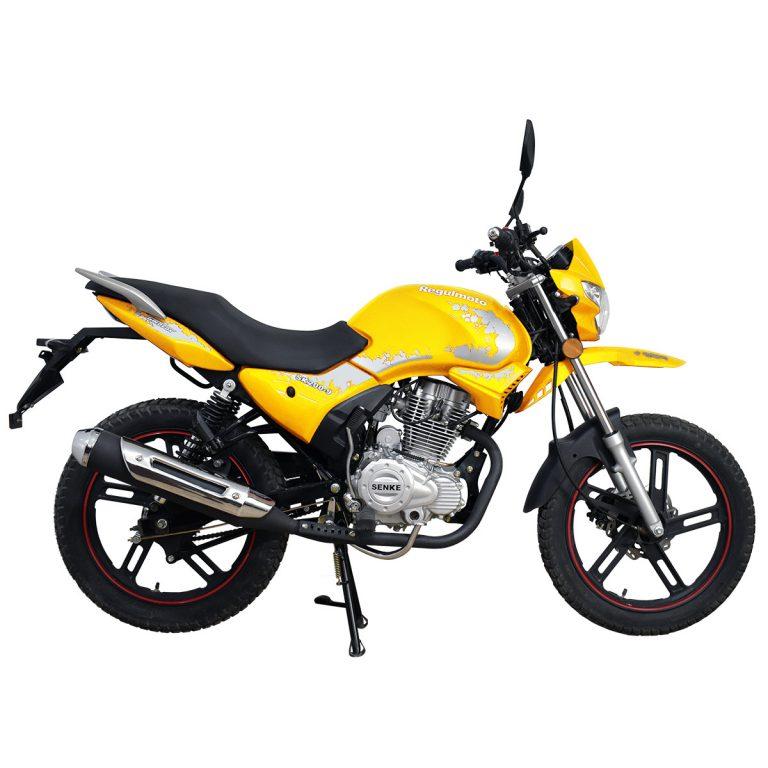Мотоцикл Regulmoto SK200-9 03