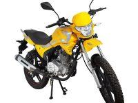 Мотоцикл Regulmoto SK200-9 04