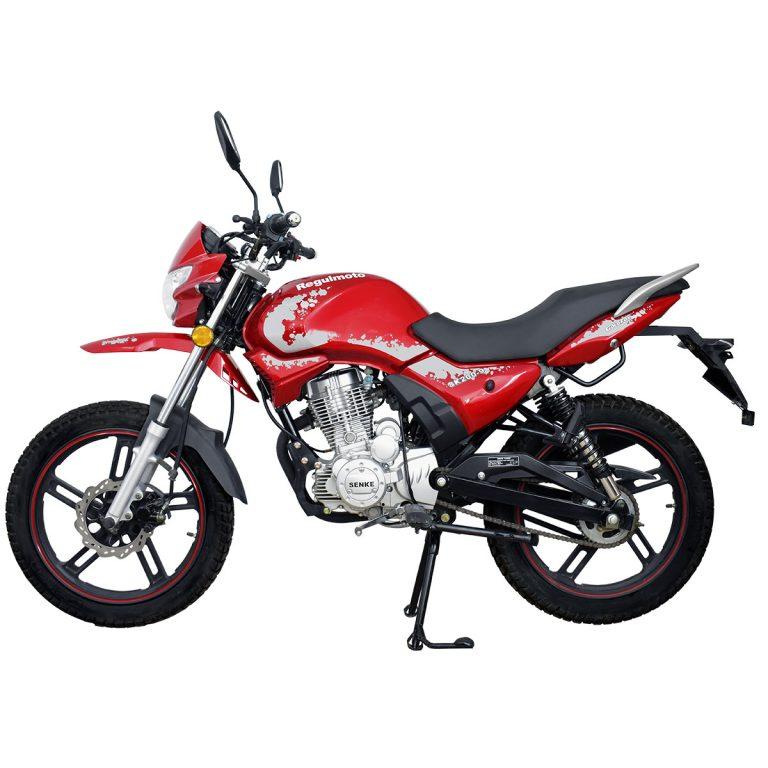 Мотоцикл Regulmoto SK200-9 07