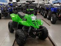 Raptor-110cc-01