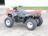 IRBIS ATV150 ATV250 новый 2020 -002