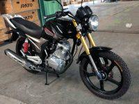 SHOGUN 200 05