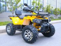 200 WILD TRACK X PRO 14240-01