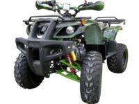 Квадроцикл AVENGER EVO 140 01 фото