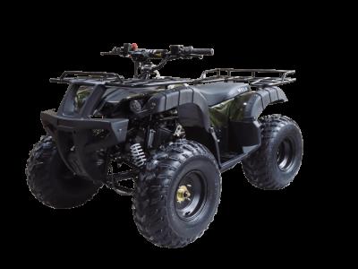 ATV Thunder 150 01