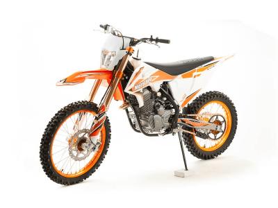 Кросс SX250 04