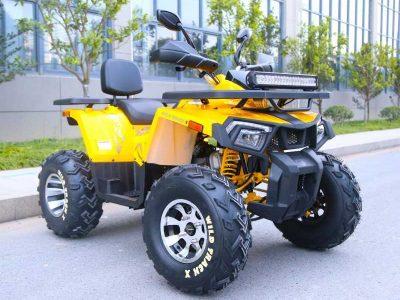 WILD TRACK X PRO 200 02